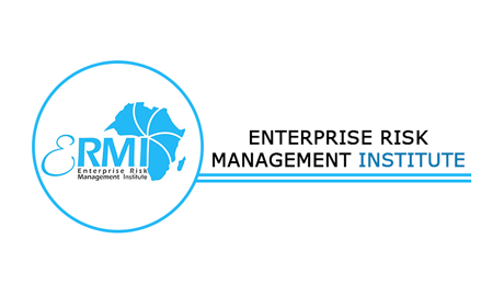 Enterprise Risk Management Institute (ERMI) Logo